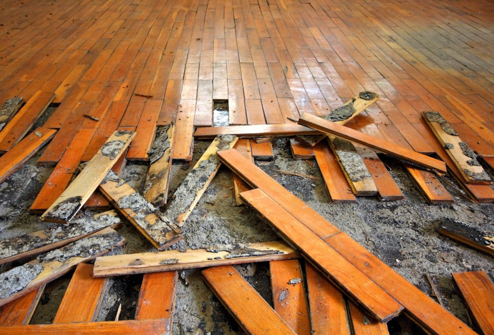 Wood floors rotting being pulled up